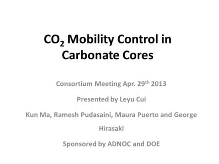 CO 2 Mobility Control in Carbonate Cores Consortium Meeting Apr. 29 th 2013 Presented by Leyu Cui Kun Ma, Ramesh Pudasaini, Maura Puerto and George Hirasaki.