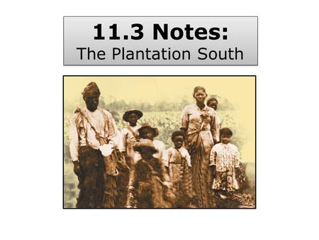 11.3 Notes: The Plantation South 11.3 Notes: The Plantation South.