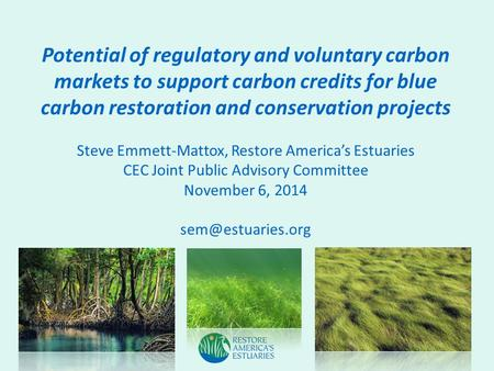 Potential of regulatory and voluntary carbon markets to support carbon credits for blue carbon restoration and conservation projects Steve Emmett-Mattox,