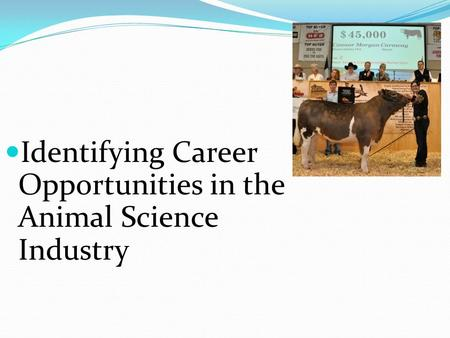 Identifying Career Opportunities in the Animal Science Industry.