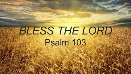 BLESS THE LORD Psalm 103. HOW TO STUDY A PSALM Pray for insight & humility Read it all at once Answer 4 questions.