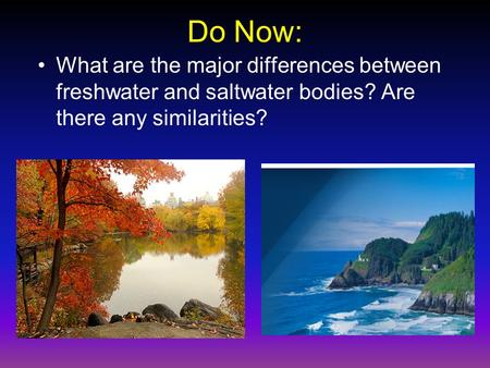 Do Now: What are the major differences between freshwater and saltwater bodies? Are there any similarities?