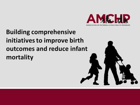 Building comprehensive initiatives to improve birth outcomes and reduce infant mortality.