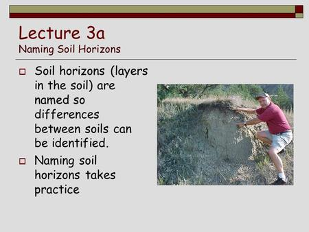 Lecture 3a Naming Soil Horizons  Soil horizons (layers in the soil) are named so differences between soils can be identified.  Naming soil horizons takes.