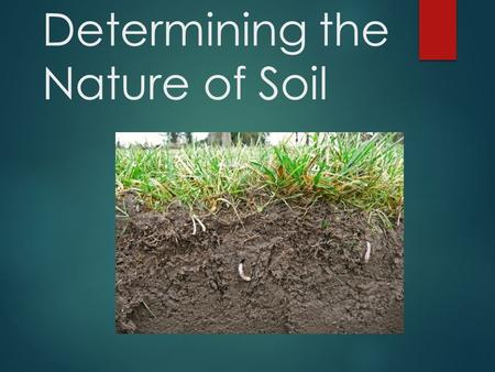 Determining the Nature of Soil Common Core/Next Generation Science Standards Addressed!  MS ‐ ESS2 ‐ 2. - Construct an explanation based on evidence.
