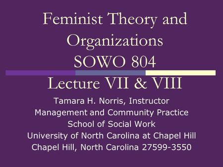 Feminist Theory and Organizations SOWO 804 Lecture VII & VIII Tamara H. Norris, Instructor Management and Community Practice School of Social Work University.