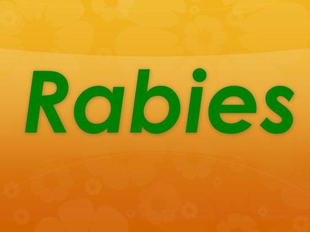 Rabies. History of Rabies  Rabies has been known since 2000 B.C.  In the 18 th century, many countries tried to kill stray dogs so human won't get bitten.