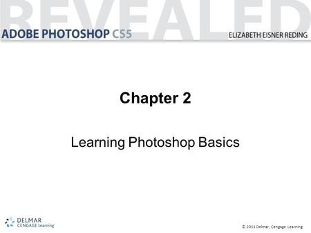 © 2011 Delmar, Cengage Learning Chapter 2 Learning Photoshop Basics.