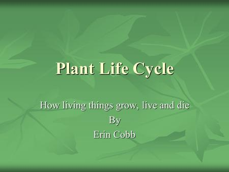 Plant Life Cycle How living things grow, live and die By Erin Cobb.