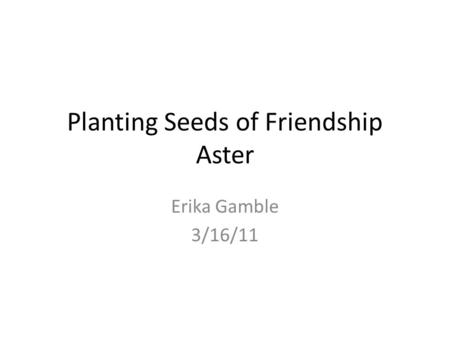 Planting Seeds of Friendship Aster Erika Gamble 3/16/11.