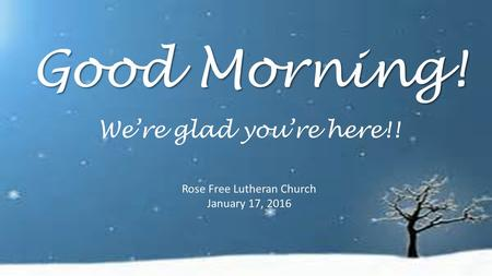 Good Morning! Rose Free Lutheran Church January 17, 2016 We're glad you're here!!