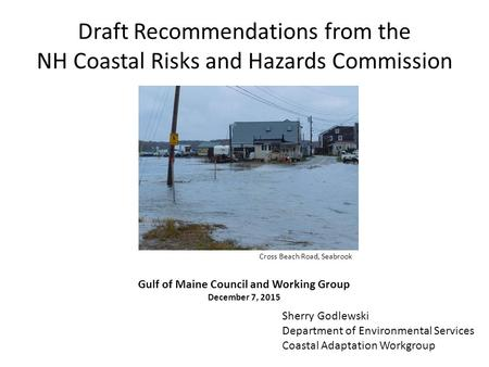 Draft Recommendations from the NH Coastal Risks and Hazards Commission Sherry Godlewski Department of Environmental Services Coastal Adaptation Workgroup.