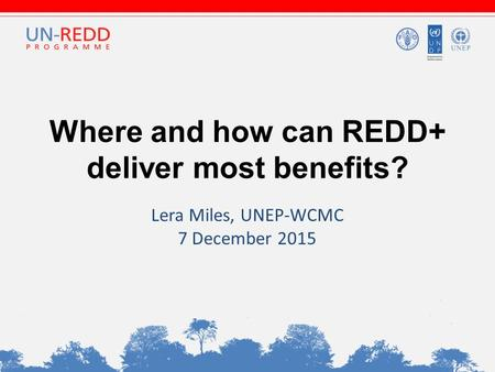Where and how can REDD+ deliver most benefits? Lera Miles, UNEP-WCMC 7 December 2015.