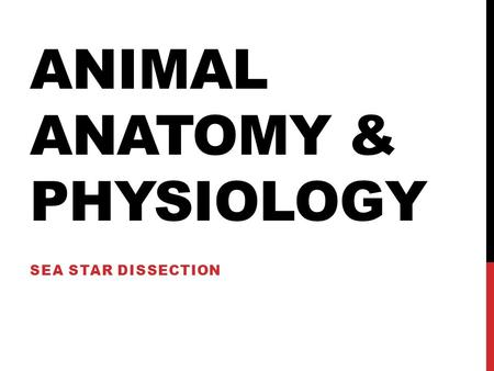 Animal Anatomy & Physiology