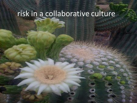 Risk in a collaborative culture.  Why risk matters  Profiling risk  Mitigating risk  Communicating and owning mitigation.
