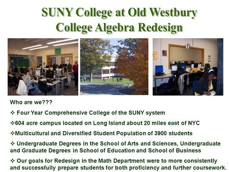 Who are we???  Four Year Comprehensive College of the SUNY system  604 acre campus located on Long Island about 20 miles east of NYC  Multicultural.