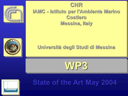 WP3WP3 State of the Art May 2004 CNR IAMC - Istituto per lAmbiente Marino Costiero Messina, Italy Università degli Studi di Messina CNR IAMC - Istituto.