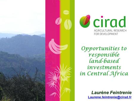 Opportunities to responsible land-based investments in Central Africa Laurène Feintrenie