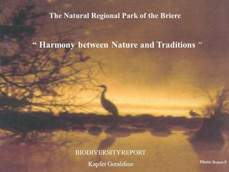 The Natural Regional Park of the Briere Harmony between Nature and Traditions BIODIVERSITY REPORT Kapfer Geraldine Photo : Bonnet P.