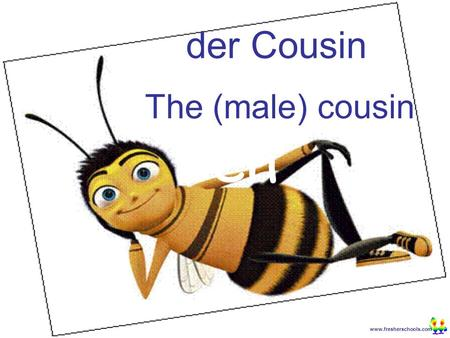 Www.fresherschools.com Ben der Cousin The (male) cousin.