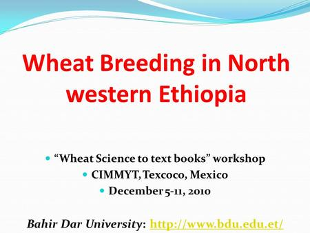 Wheat Breeding in North western Ethiopia Wheat Science to text books workshop CIMMYT, Texcoco, Mexico December 5-11, 2010 Bahir Dar University: