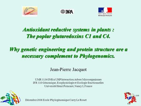 Antioxidant reductive systems in plants : The poplar glutaredoxins C1 and C4. Why genetic engineering and protein structure are a necessary complement.