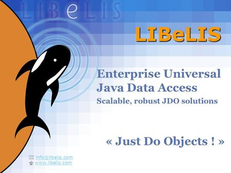 1 LIBeLIS Enterprise Universal Java Data Access Scalable, robust JDO solutions « Just Do Objects ! »