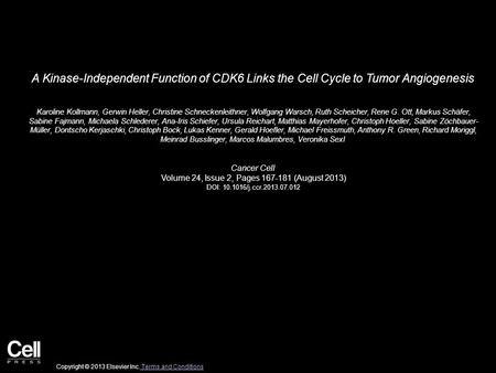 A Kinase-Independent Function of CDK6 Links the Cell Cycle to Tumor Angiogenesis Karoline Kollmann, Gerwin Heller, Christine Schneckenleithner, Wolfgang.