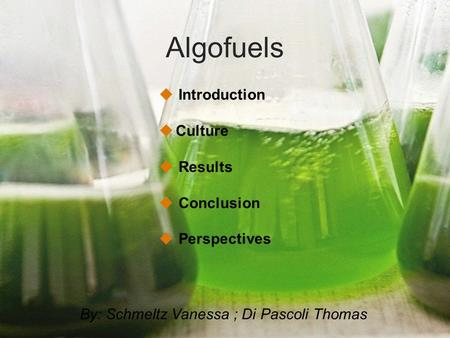 Algofuels Introduction Culture Results Conclusion Perspectives By: Schmeltz Vanessa ; Di Pascoli Thomas.
