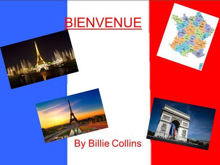 BIENVENUE By Billie Collins. Contents page Introduction page 1 Pets page 2 How old are you? page 3 Where do you live? page 4 When is your birthday? page.