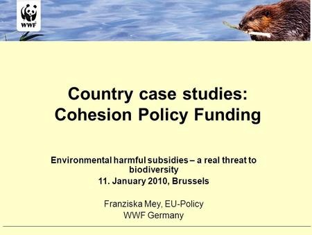 Country case studies: Cohesion Policy Funding Environmental harmful subsidies – a real threat to biodiversity 11. January 2010, Brussels Franziska Mey,