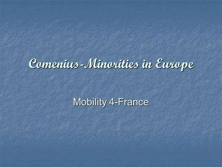 Comenius-Minorities in Europe Mobility 4-France.