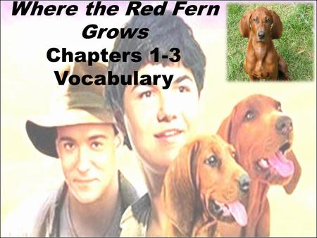 Where the Red Fern Grows Chapters 1-3 Vocabulary.