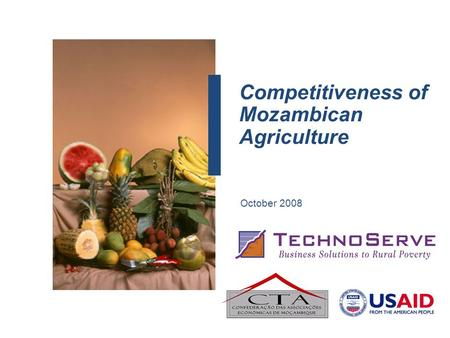 Competitiveness of Mozambican Agriculture October 2008.