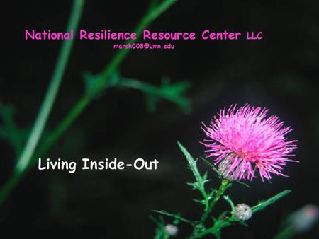 National Resilience Resource Center LLC Living Inside-Out.