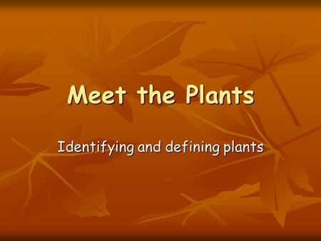 Meet the Plants Identifying and defining plants. What do plants need to grow? Air Air Water – not too much!! Water – not too much!! Light Light Soil Soil.