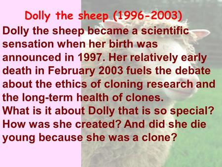 Dolly the sheep became a scientific sensation when her birth was announced in 1997. Her relatively early death in February 2003 fuels the debate about.