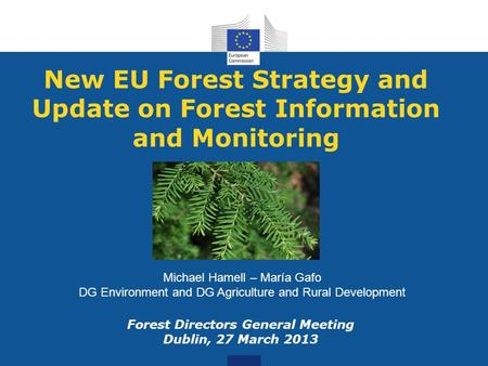 New EU Forest Strategy and Update on Forest Information and Monitoring Forest Directors General Meeting Dublin, 27 March 2013 Michael Hamell – María Gafo.