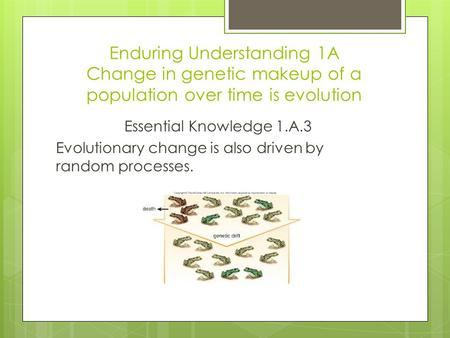 Enduring Understanding 1A Change in genetic makeup of a population over time is evolution Essential Knowledge 1.A.3 Evolutionary change is also driven.