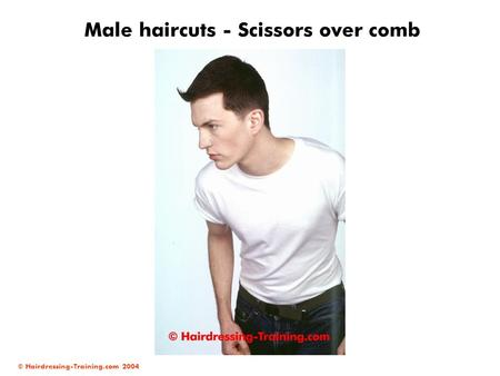 © Hairdressing-Training.com 2004 Male haircuts - Scissors over comb.