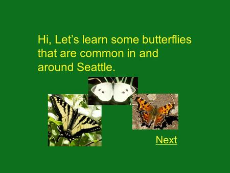 Hi, Lets learn some butterflies that are common in and around Seattle. Next.