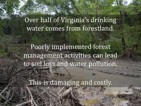 Over half of Virginias drinking water comes from forestland. Poorly implemented forest management activities can lead to soil loss and water pollution.