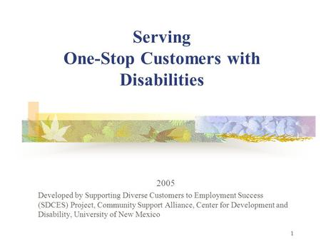 1 Serving One-Stop Customers with Disabilities 2005 Developed by Supporting Diverse Customers to Employment Success (SDCES) Project, Community Support.