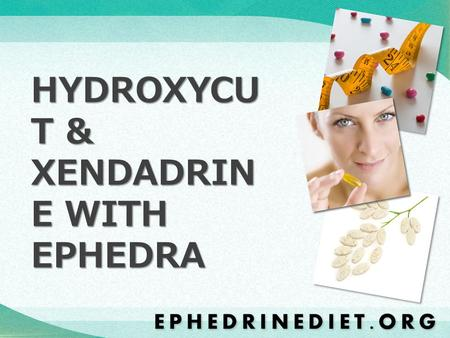 HYDROXYCU T & XENDADRIN E WITH EPHEDRA. Hydroxycut and Xenadrine are two of the top selling weight loss products available today.
