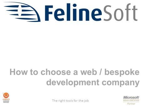 The right tools for the job How to choose a web / bespoke development company.