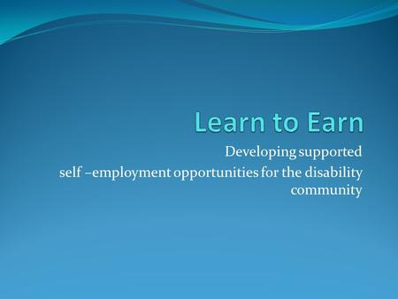 Developing supported self –employment opportunities for the disability community.