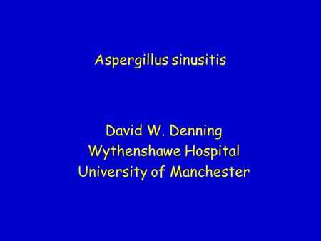Aspergillus sinusitis David W. Denning Wythenshawe Hospital University of Manchester.