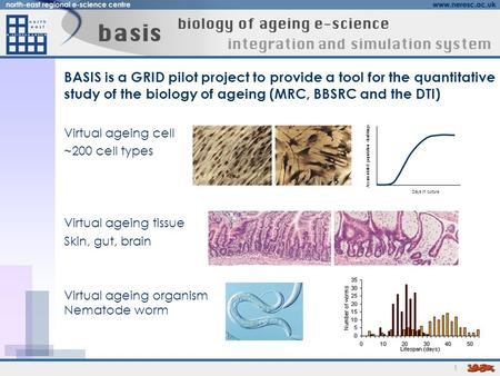 1 BASIS is a GRID pilot project to provide a tool for the quantitative study of the biology of ageing (MRC, BBSRC and the DTI) Virtual ageing cell ~200.