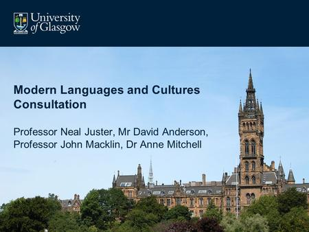 Modern Languages and Cultures Consultation Professor Neal Juster, Mr David Anderson, Professor John Macklin, Dr Anne Mitchell.