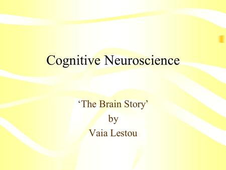 Cognitive Neuroscience The Brain Story by Vaia Lestou.